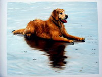 sample oil painting, Dog portrait, Pet portrait, sample portrait painting from photo - 49