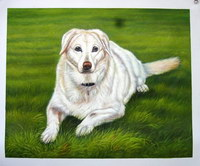 sample oil painting, Dog portrait, Pet portrait, sample portrait painting from photo - 59