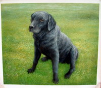 sample oil painting, Dog portrait, Pet portrait, sample portrait painting from photo - 58